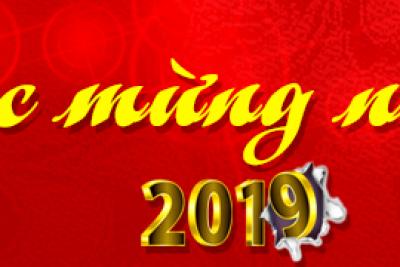 ĐẠI HỘI CHI BỘ NĂM 2019 TRƯỜNG TH VĨNH THUẬN 1